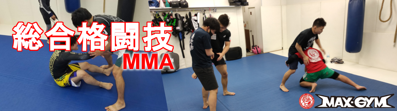 総合格闘技MMA